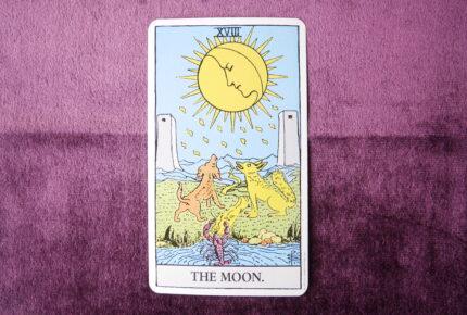 タロットカード・大アルカナ「月」:眠りから目覚めた「ザリガニ」はどこに向かって行こうとしていいるのか