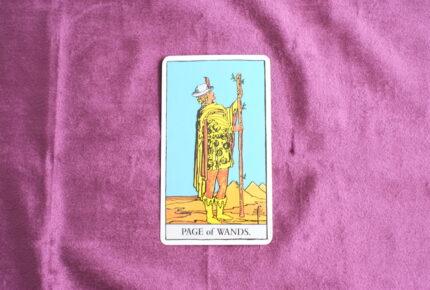 タロットカード・コートカード「ワンドペイジ」:「恐れ」を知らないからこそ出来ることがある