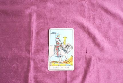 タロットカード・小アルカナ「カップのナイト」:白馬の王子様は余裕綽々でやってくる
